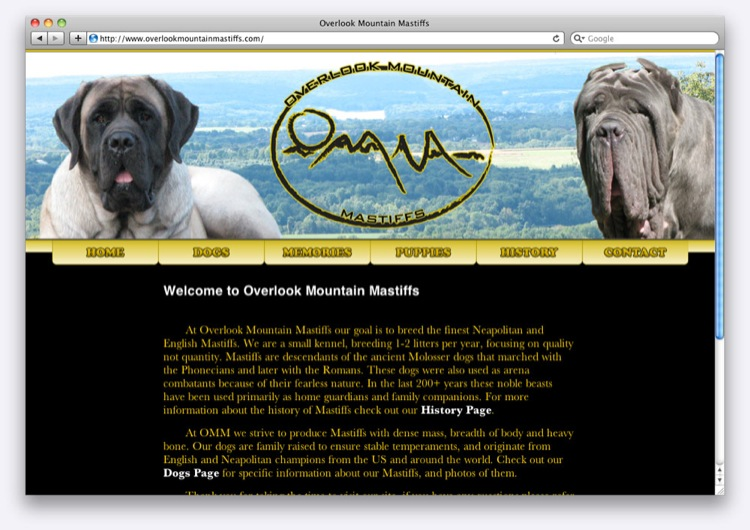 Overlook Mountain Mastiffs